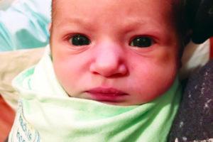 Baby Harlee